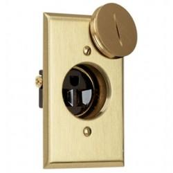 Pass & Seymour - 1542-TR-DR - Pass & Seymour 1542-TR-DR Clock Hanger Receptacle, 15A, Brass, White