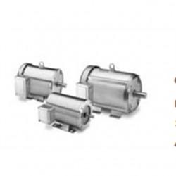 Marathon Electric / Regal Beloit - 5KH32GNB811X - Marathon Motors 5KH32GNB811X Motor, 1800/1500RPM, 1/3HP, 100 -240VAC, 48Y Frame, Carbonator Pump