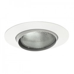 Acuity Brands Lighting - 529-WH - Juno Lighting 529-WH Eyeball Trim, Adjustable, 5, PAR30, White