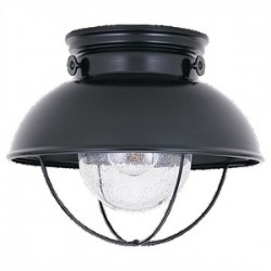 Sea Gull Lighting - 8869-12 - Sea Gull 8869-12 Outdoor Close To Ceiling One L