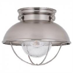 Sea Gull Lighting - 8869-98 - Sea Gull 8869-98 Ceiling Light, Outdoor, 1 Light, 100W, Brushed Stainless