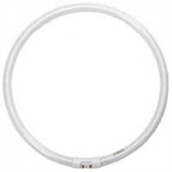 Halco - 109084 - Halco 109084 Fluorescent Lamp, Circular, T5, 40W, 3500K
