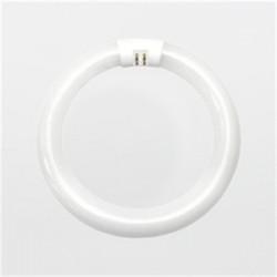 Candela - FC8T9CWRS - Candela FC8T9CWRS Fluorescent Lamp, Circular, T9, 22W, 4100K