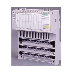 Schneider Electric - 170AAO12000 - Output Module, Expansion, Modicon Momentum PLCs, 4 Channel, Current, Voltage