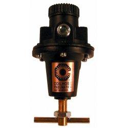 "Coilhose Pneumatics - 8804K - 1/2"" Tamperproof Regulator, Ea"