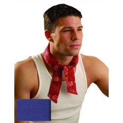 Occunomix - 940-018 - Cooling Bandana, Cotton, Navy, Universal