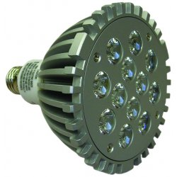 TPI - LED-12 - 12watt Replacement Bulb