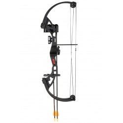Bear Archery - BA-AYS300BR - Brave black w/biscuit RH
