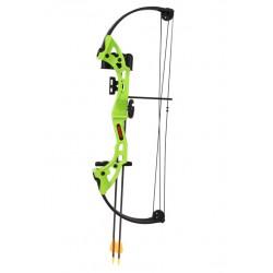 Bear Archery - BA-AYS300GR - Brave in Flo Green w/ Biscuit, RH