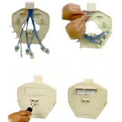ICC - IC108MMBIV - Multi-media Box, 7-port, Ivory