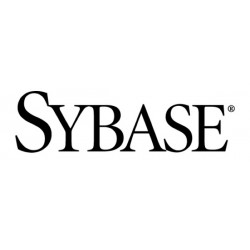 Sybase Electronics Computer and Photo