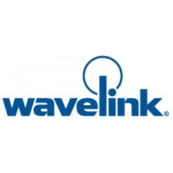 Wavelink - 120-LI-GENTN2 - Wavelink TN Client for PPC2003 2 in 1 for PPC2003 2-in-1 - License - 1 Device - Standard