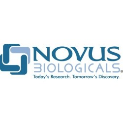 Novus Biologicals - NB100-1538 - Goat Polyclonal anti-NPY5R Antibody, Novus Biologicals (NB100-1538) (Each)