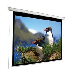 "Draper - 800005 - Draper Electrol Projection Screen - 120"" Diagonal"