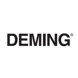 Deming / Crane - 0068128 - Deming 0068128, RING, IMP, 4.50' ID, 4.87'OD Crane