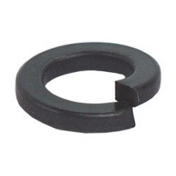 Suburban Bolt - 1-919-212 - Split Lock Washers