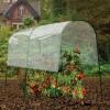 Gardman - 7623 - Tomato Greenhouse