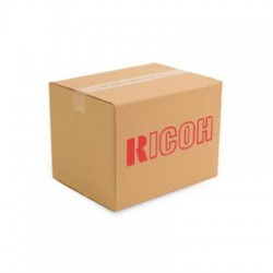 Ricoh - 407113 - Ricoh IEEE 802.11 Interface