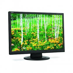 "NEC - AS221WM-BK - NEC Display AccuSync AS221WM 22"" CCFL LCD Monitor - 16:10 - 5 ms - Adjustable Display Angle - 1680 x 1050 - 16.7 Million Colors - 250 Nit - 1,000:1 - WSXGA - Speakers - DVI - VGA - 27 W - Black"