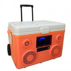 Sondpex - CA-E065O - Tunes2Go KoolMAX Clr Orng