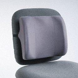 "Fellowes - 91926 - Fellowes Standard Back Rest - Graphite - Adjustable Strap - 13"" x 4"" x 12"" - Graphite"