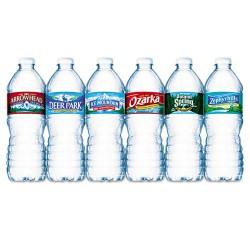 Nestle - 101243PLT - Bottled Natural Spring Water, .5L, Bottles, 1872/Pallet