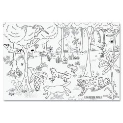 Pacon - 0078840 - Learning Walls Paper, Rain Forest, 72 x 48