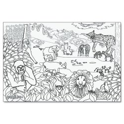 Pacon - 0078930 - Learning Walls Paper, African Safari, 72 x 48