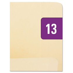 "Smead - 67913 - Smead Yearly End Tab File Folder Labels - ""Year"" - 1"" Width x 0.50"" Length - 25 / Sheet - Rectangle - Purple - 250 / Pack"""