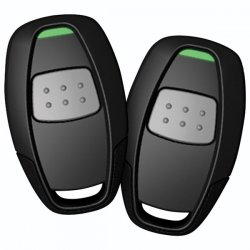Avital - 4113LX - AVITAL 4113LX Remote Start with Two 1-Button Remotes