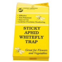 Seabright Laboratories - HGSLWFT - Whitefly Traps, 5 pack