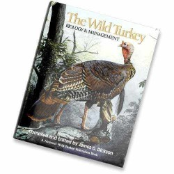 Other - 35851 - The Wild Turkey