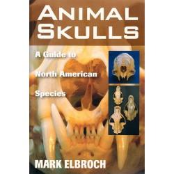 Other - 59929 - Animal Skulls
