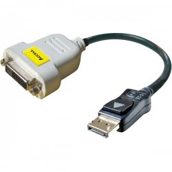 Accell - B087B-001B - Accell UltraAV DVI Adapter Cable - DisplayPort Male Digital Audio/Video, DVI-D Digital Video - 10""
