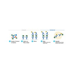 EMD Millipore - 03-0125-01 - SMC Mouse IL-17F Discovery Immunoassay Kit
