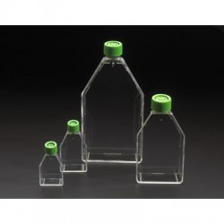 Chemglass - 229540 - Suspension Culture Flasks