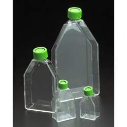 Chemglass - 229371 - CELLTREAT Cell Culture Flasks