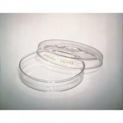 Corning - 3160-102-PK12 - Pyrex Reusable Glass Petri Dishes