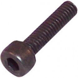 Milwaukee Electric Tool - 06-82-3024 - Milwaukee 1/4' - 20 X 1/2' Taptite Fillister Head Screw (For Use With Bandsaw)
