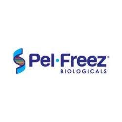 Pel-freeze Biologicals - 31132-1 - Rabbit Whole Blood Non-sterile Rabbit Whole Blood Non-sterile (each (500ml))