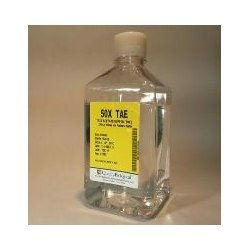 Quality Biological - 351-008-131 - 50X TAE BUFFER 1000ML (Each)
