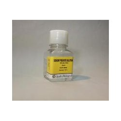 Quality Biological - 116-079-721EA - 100X SODIUM PYRUVATE 100ML (Each)