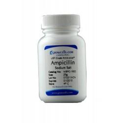 Grow Cells - MBPC-1901 - Ampicillin Sodium Salt, USP Grade Ampicillin Sodium Salt (Each)