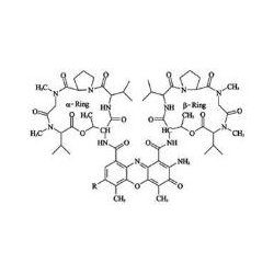 BioVision - 1036-50 - ACTINOMYCIN D (10 MM) 50UL (Each)