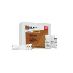 Dupont - D14812018 - Bax System Real Time Shigella Kit (each)