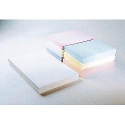 Connecticut Cleanroom - PB2S003 - Munising LP Cleanroom Stationery, Connecticut Clean Room Plain Paper (Pack of 250)