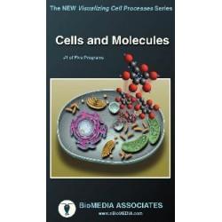 Biomedia Associates - Vc405 - Videodvd Genetic Code Translation 15 (each)