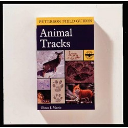 Houghton Mifflin - 061851743X - BOOK ANIMAL TRACKS (Each)
