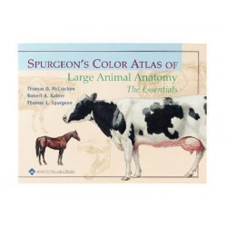 Matrix Scientific - 683306731 - Book Spurgeons Atlas Of Lge Animal Anat (each)