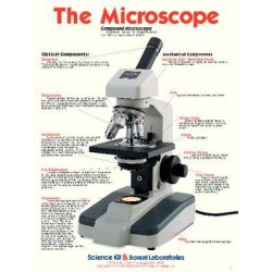 Imagen - 4652200 - Poster The Microscope Double Sided (each)